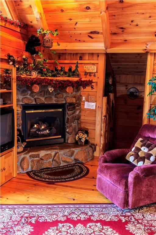 Honey Bear Hideaway - Image 1 - Sevierville - rentals