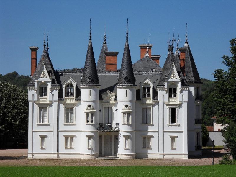 cinderella castle in the centre of France - Image 1 - Villeurbanne - rentals