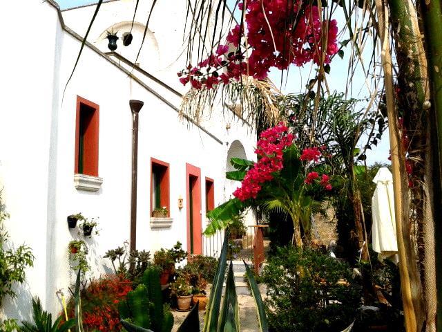 masseria delle rose - your home in the heart of Apulia . - Alessano - rentals