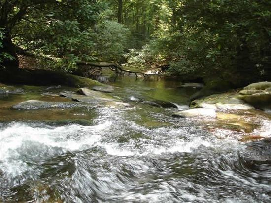 Creek view from all the deck area - Hemlock Creek - Blue Ridge GA - Blue Ridge - rentals