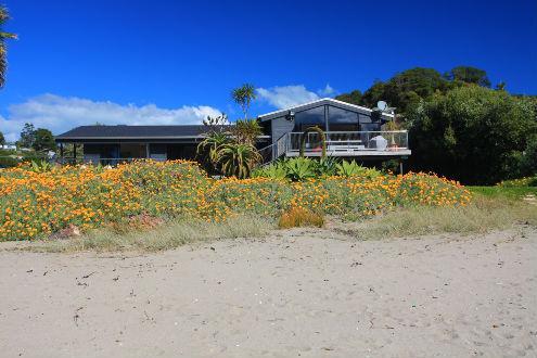PALM BEACH - Image 1 - Waiheke Island - rentals