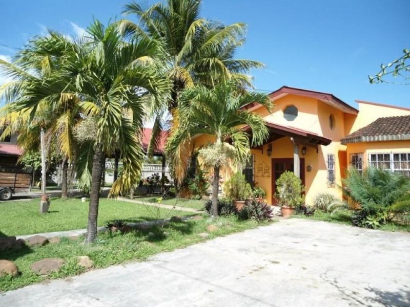 Front Yard - CasaDelSol - San Ignacio - rentals