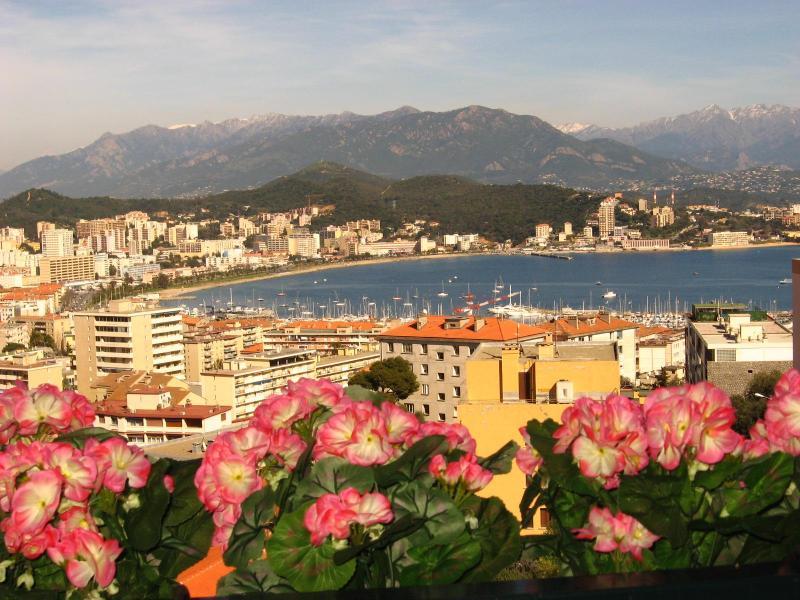 VIEW FROM TERRACE - Air-Conditioned Apartment/ Flat  - AJACCIO - Ajaccio - rentals