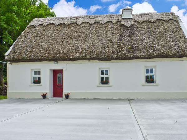 RIVER VIEW, all ground floor, en-suite facilities, oil-fired stove, in Kilcolgannear Galway, Ref. 26554 - Image 1 - Kilcolgan - rentals