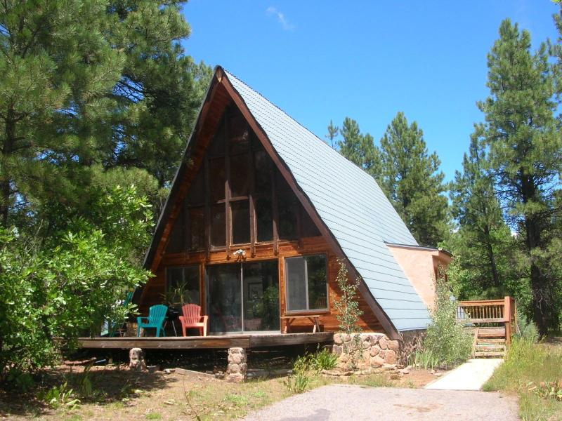 Front of Aframe - Peaceful & Quiet Aframe in Ponderosa Forest - Pagosa Springs - rentals