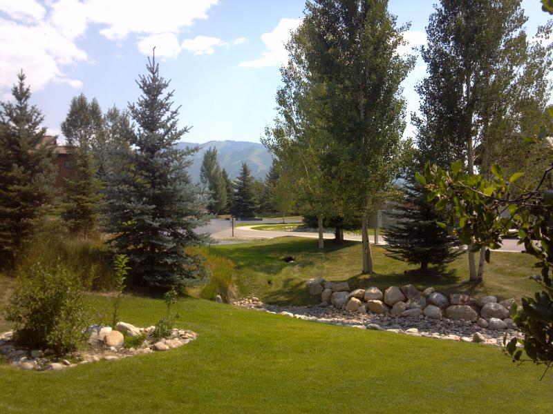 Garden patio view - Centrally Located, Cozy and Comfortable Yampa Getaway - Steamboat Springs - rentals