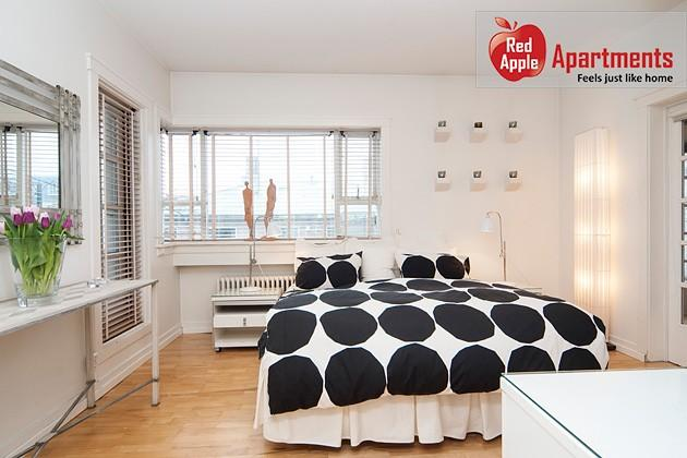 Center Apartment with Large Sunny Balconies - Image 1 - Reykjavik - rentals