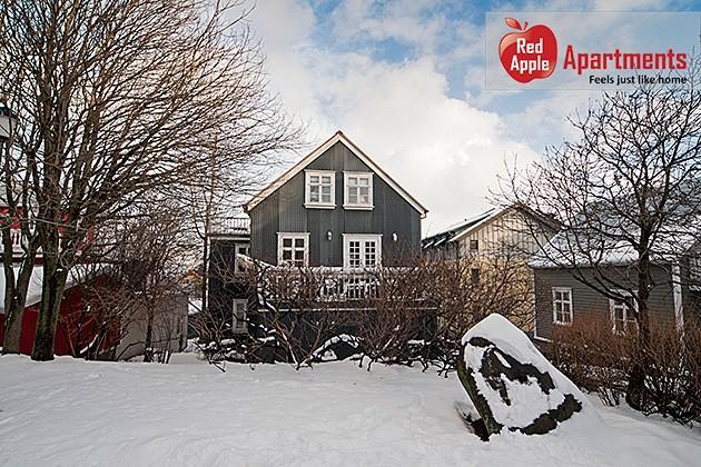 Studio Apartment in City Center - Image 1 - Reykjavik - rentals