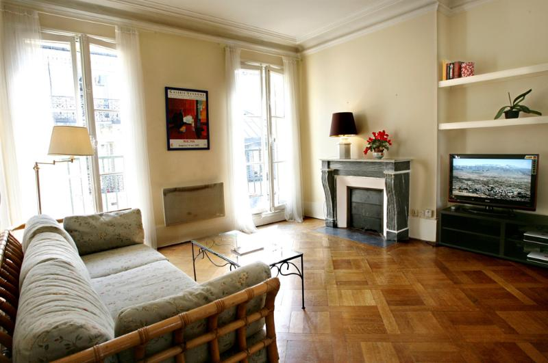 The living-room flooded with sunlight - Lovely large 1 BR with balcony in Le Marais - Paris - rentals