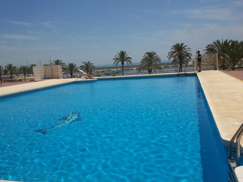 big swimming pool - FLAT in the heart of the city: pool/beach/fun... everything nearby!! - Fuengirola - rentals