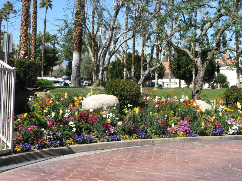 beautiful entrance flower beds to welcome you. - Mesquite Country Club, Phase 4, Ground Floor Unit. - Palm Springs - rentals