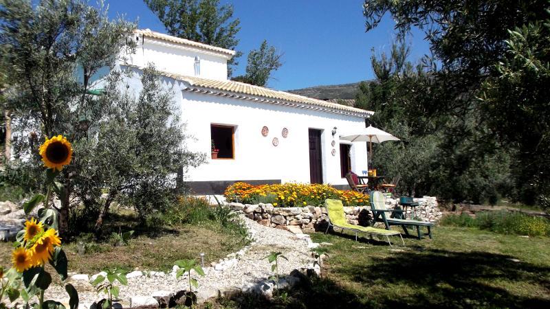 La Casita - Casa Girasol in olive grove with plunge pool - Priego de Cordoba - rentals