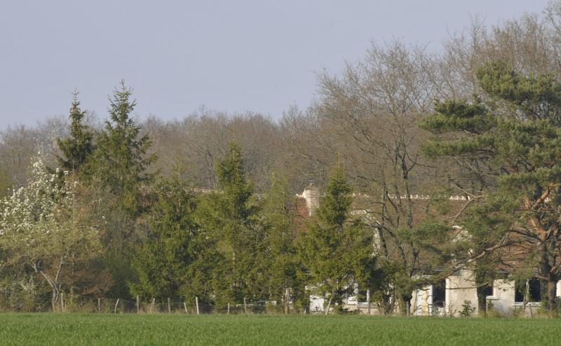 La Pinsonniere - Image 1 - Civray-de-Touraine - rentals