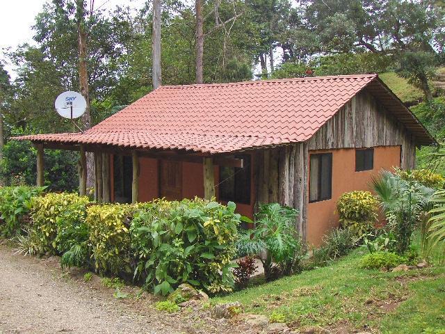 Cabina #5  Beautiful gardens !!  all nature - Cabinas for Rent Short and long terms - San Ramon - rentals