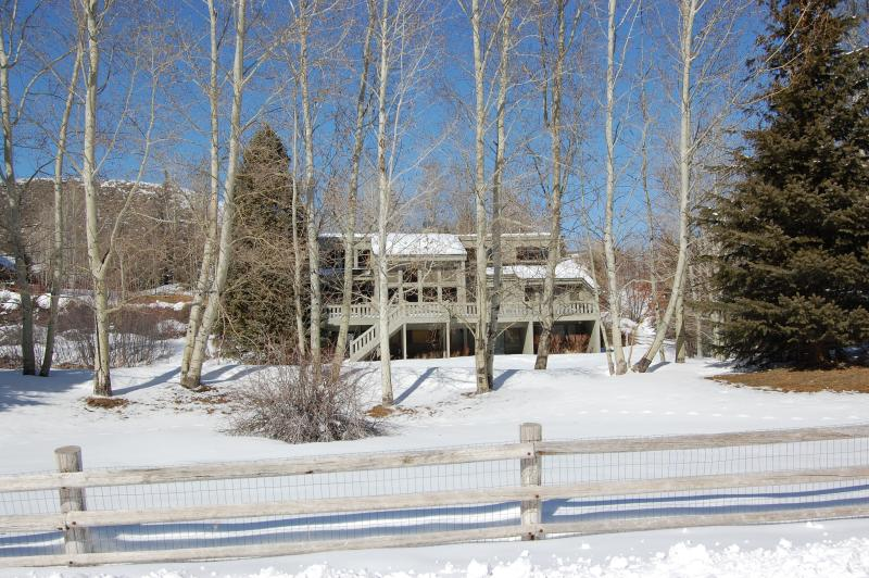 back yard winter - Big beautiful Home - huge yard - gorgeous views - Ketchum - rentals