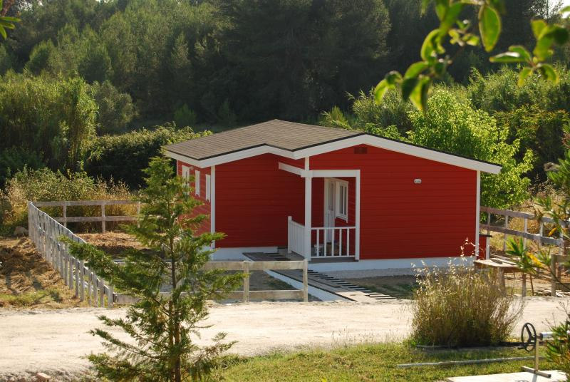 Forest House - House in the Forest - Abrantes - rentals