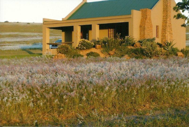 Quinlands Farm Cottages - Image 1 - Western Cape - rentals