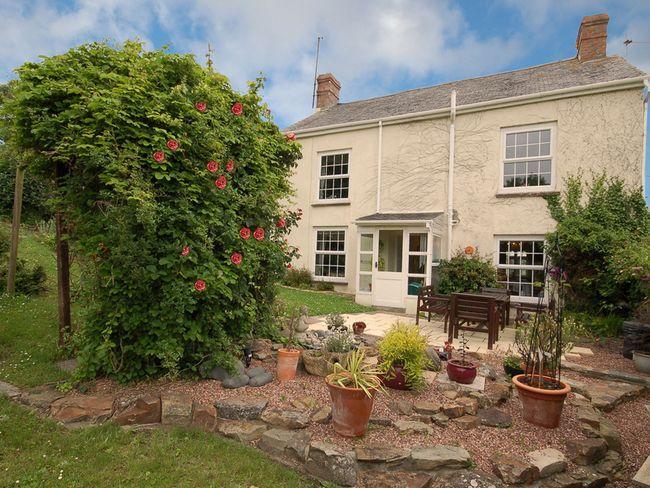 Cottage's enclosed garden - PILGA - Bideford - rentals