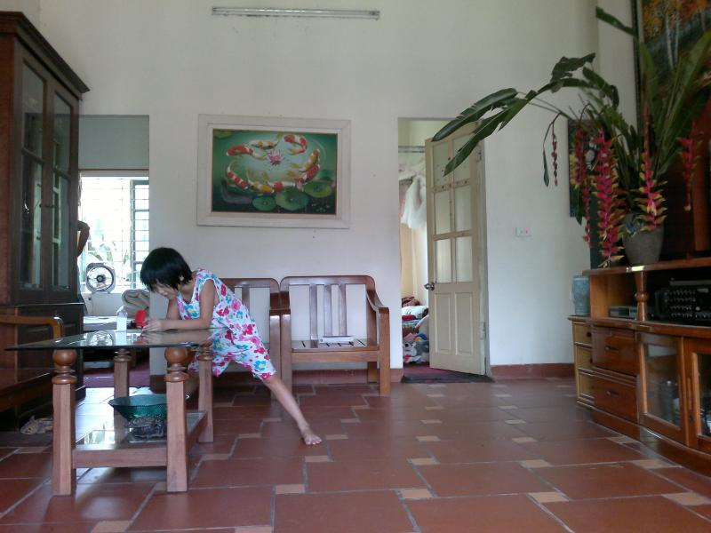 You can see 3 bedrooms with garden view, i will post more soon .. - house in a very nice villige - Hanoi - rentals