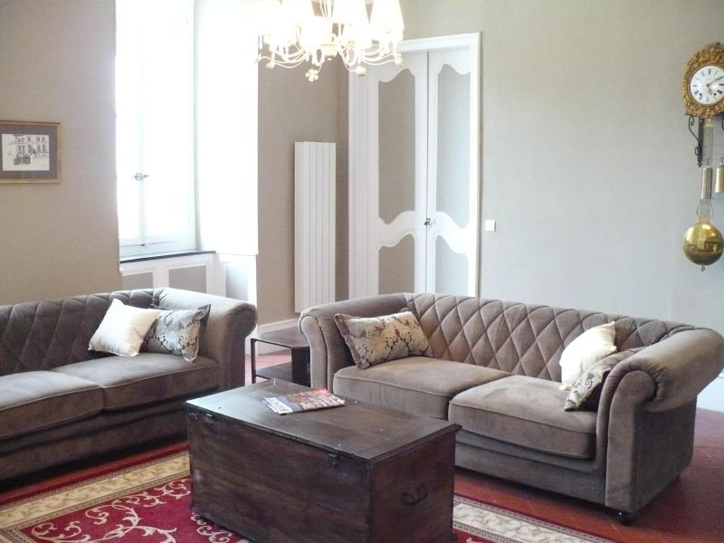 living room overlooking the square - HUGE GRAND APARTMENT OVERLOOKING THE MAIN SQUARE - Quillan - rentals