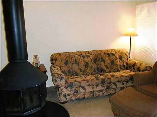 Sleeper Sofa and a Wood-Burning Fireplace in the Living Room - Cozy Snowcrest Condo - Close to Base Area Shops & Restaurants (1320) - Crested Butte - rentals
