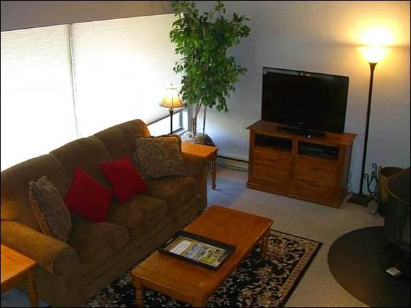 Living Room Features a Sleeper Sofa, Flat-Screen TV, and Wood-Burning Fireplace - Sunny & Open Vacation Condo - Stylish Furnishings Throughout (1323) - Crested Butte - rentals