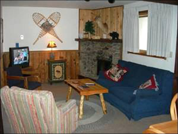 Fireplace, TV, and Sleeper Sofa in the Living Room - Great for Winter or Summer Trips - Hillside Views (1346) - Crested Butte - rentals