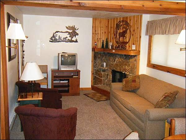 Fireplace, TV, and Sleeper Sofa in the Living Room - Cute Three Seasons Condo - Mountain Decor Throughout (1349) - Crested Butte - rentals