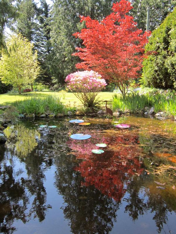 Garden in fall - Art House Suite: Romance & Comfort in nature - Roberts Creek - rentals