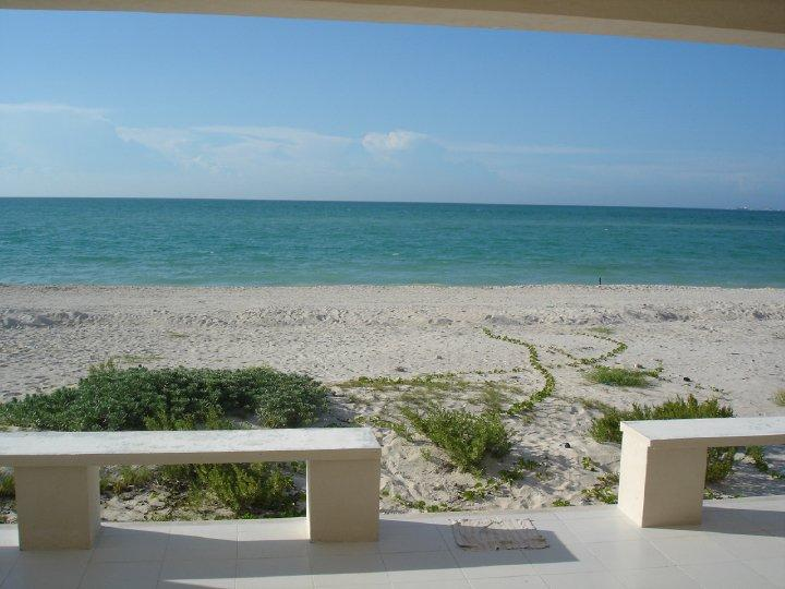 The view from the house - RELAXING BEACH FRONT HOUSE FOR RENT WITH ALL YOUR FAMILY AND FRIENDS - Progreso - rentals