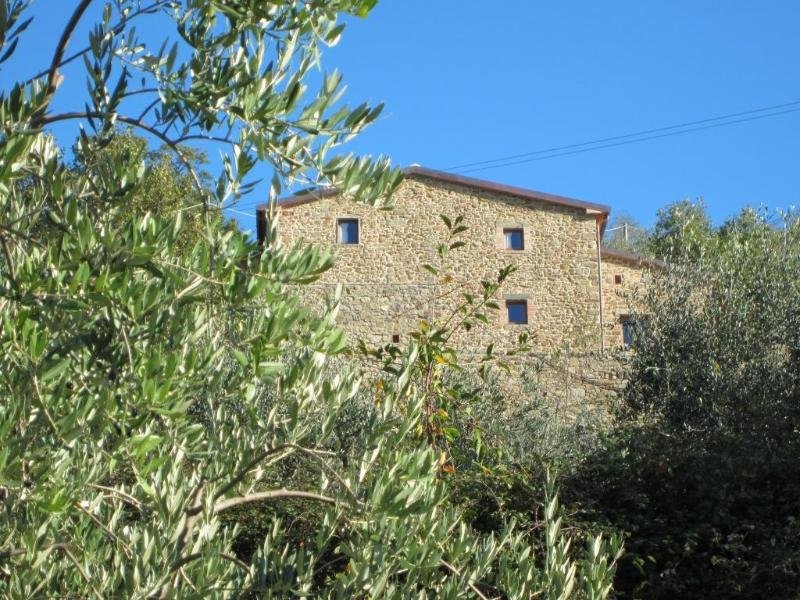 PISTOIA : sleep on the hill among old olive trees - Image 1 - Pistoia - rentals