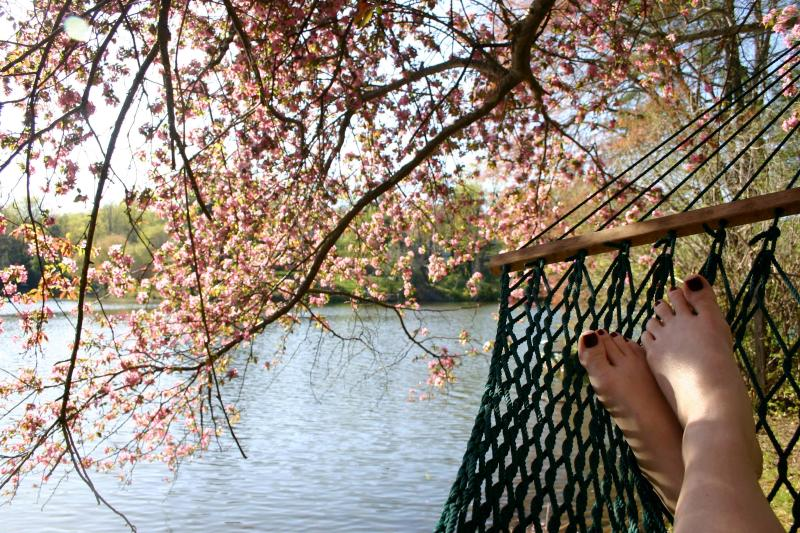Read a book or catch a nap lakeside - Lakeside Garden Apartment - Asheville - rentals