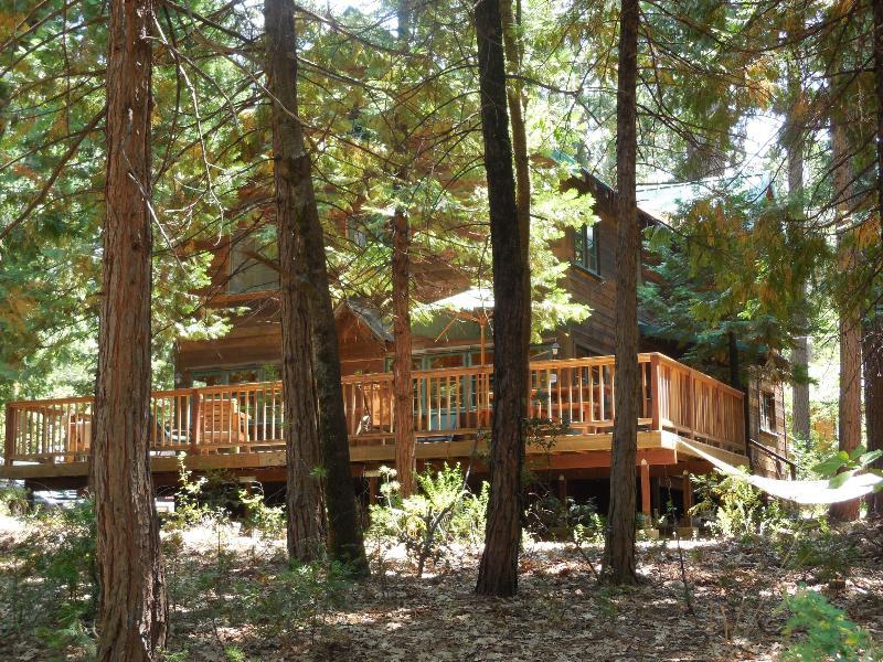Front of cabin from street - Lake Opening Weekend Special Twain Harte Sleeps 10 - Twain Harte - rentals