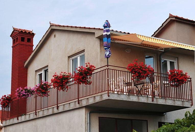 Apartment Anita - Image 1 - Pula - rentals