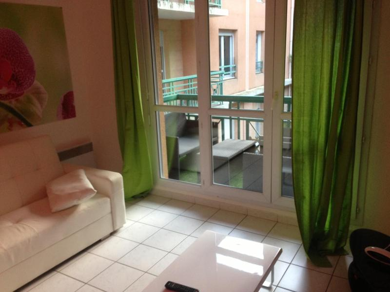 Comfortable Frejus 2 Bedroom Apartment Rental - Image 1 - frejus - rentals