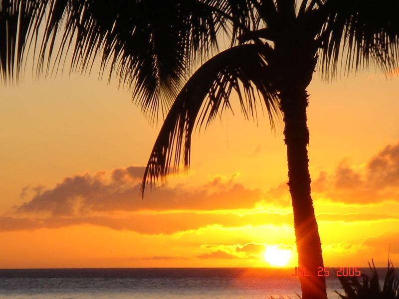 Hawaii Sunset - Aina Nalu Resort J-102 (1 BR, 1 BA) Old Lahaina Town - Lahaina - rentals