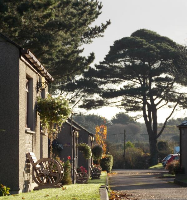 A view of the Lodges - Wheal Rodney Holiday Park-Cornwall - Marazion - rentals
