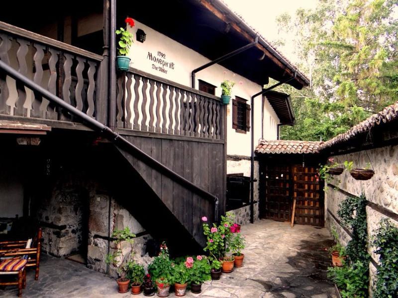 Molerova House - Image 1 - Bansko - rentals
