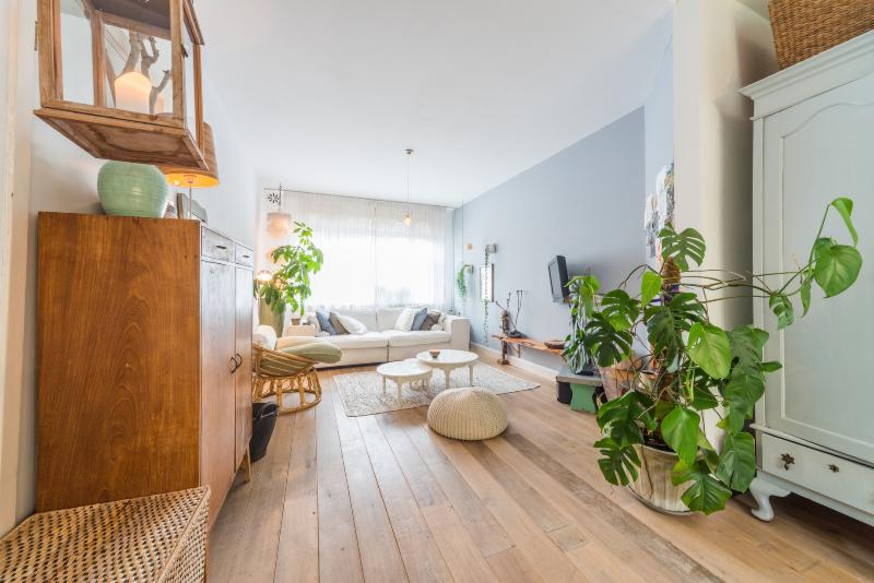 Dutch style apartment with garden, 2 bikes and Cat - Image 1 - Amsterdam - rentals