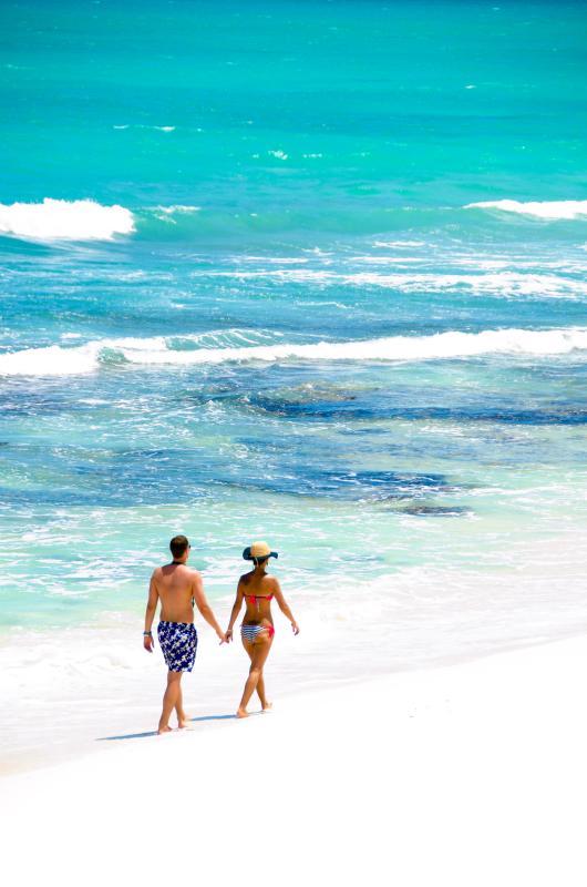Okol Paraiso A4 - Okol Paraiso A4 - Beach Front - Playa del Carmen - rentals
