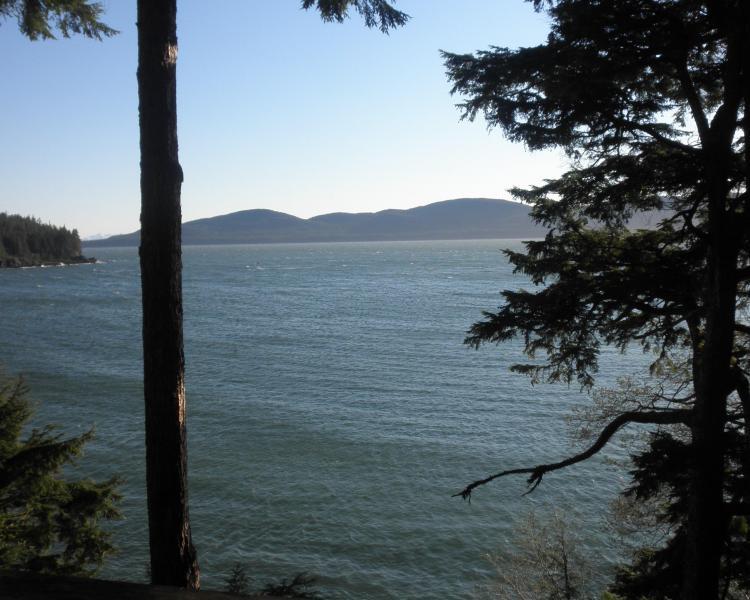 view of the beach - T Harbor beach house - Juneau - rentals