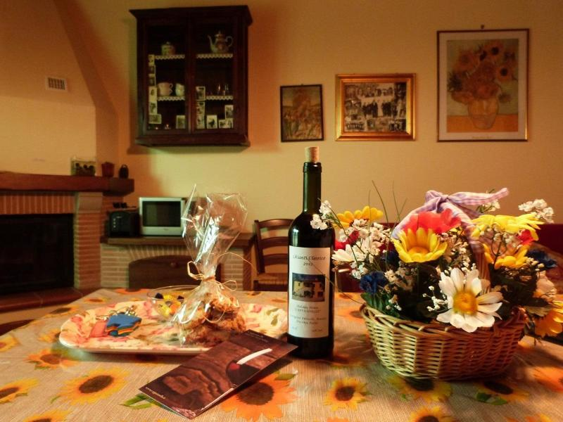 Little Love Nest: a Warm Welcome! - Little Love Nest in Tuscany with Wifi and Pool, Ca - Castiglion Fibocchi - rentals