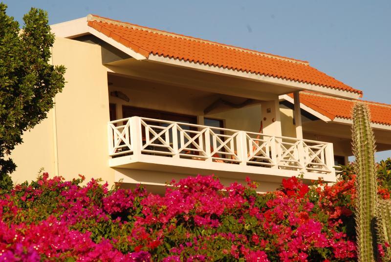MaBoJo at top floor in great flora! - MaBoJo Boca Gentil Jan Thiel  seaside penthouse - Willemstad - rentals