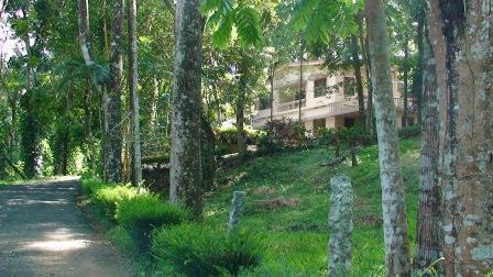 KADAVANS KANJIRAPALLY - Your Vacation Home At Kanjirapally - Kottayam - rentals