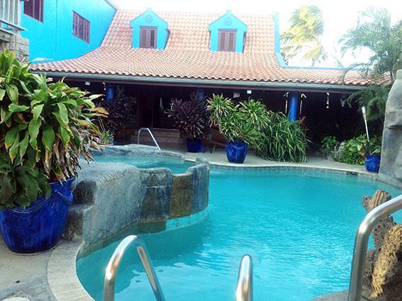 swimming pool - De Cuba Bed & Breakfast - Noord - rentals