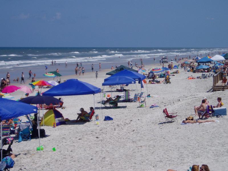 Beach - Beach Townhouse at Florida's Most Beautiful Beach - New Smyrna Beach - rentals