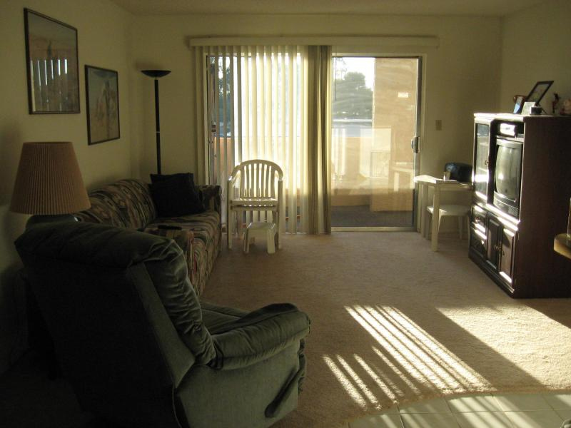 Living Room - CUBS SPRING TRAINING, MESA AZ -WALK TO NEW STADIUM - Mesa - rentals