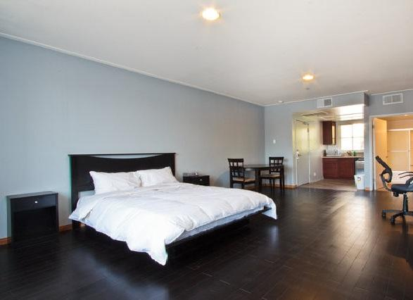 204 Luxury Executive Stodio Near UCLA In Prime Westside Los Agneles Near Dozen Restaurants - Image 1 - Los Angeles - rentals