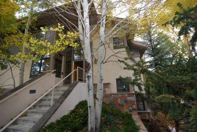 233 N. Fairway - Image 1 - Beaver Creek - rentals