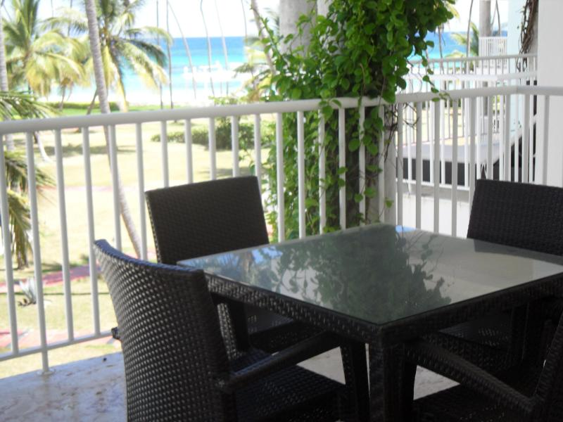 Your View - Fabulous Ocean View One BR Condo in Playa Turquesa - Punta Cana - rentals